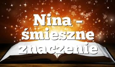 Nina – śmieszne znaczenie