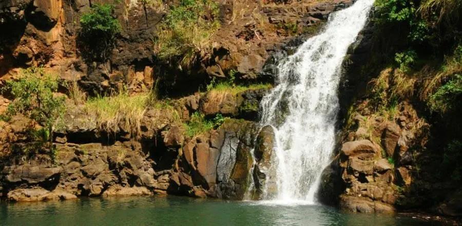 North Shore Tours Oahu