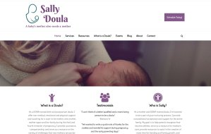 imi web design screenshots of sallydoula.com home page