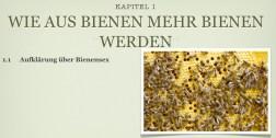 Hochzeitsmanagment_für_Bienen_Kapitel1
