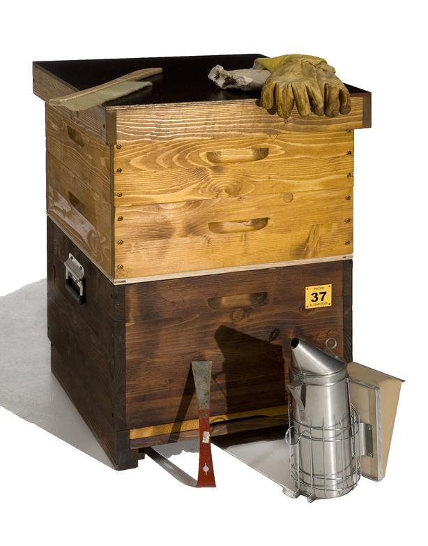 Bienenbeute und Bienenbeuten, Beutentypen und Beutearten.