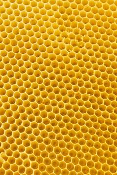 Bienenwabe aus Bienenwachs