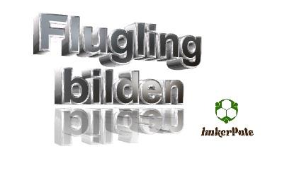 Flugling bilden, Flugling machen, Flugling ableger, Flugling Brutling, Flugling erstellen,Flugling imkerei