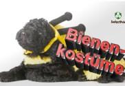 Bienenkostüm,Bienenkostuem