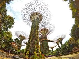 Come muoversi a Singapore