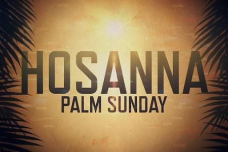 Palm Sunday 2018 2