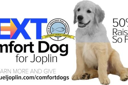 Generous Support For Joplin's Next Comfort Dog 6