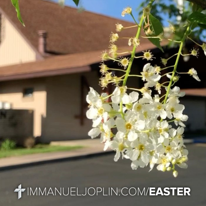 Easter at Immanuel 8