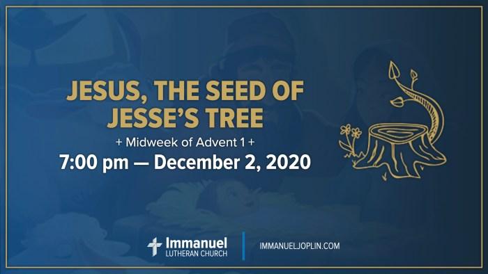 Midweek of Advent 1. Jesus, the Seed of Jesse's Tree. Immanuel Lutheran Church LCMS. Joplin Missouri.