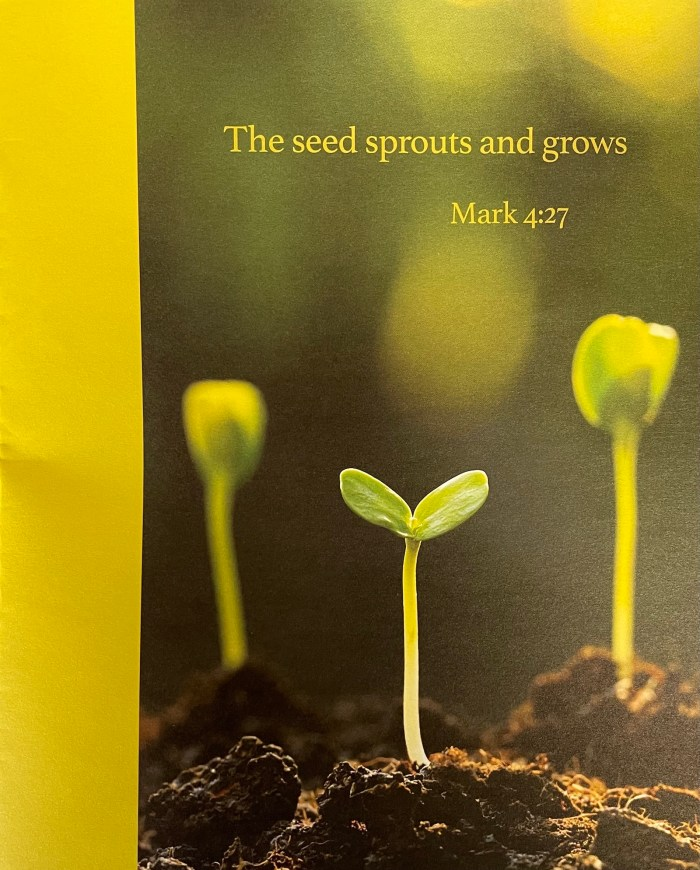 Pentecost 3 bulletin cover. Immanuel Lutheran Church LCMS. Joplin Missouri.