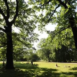 Palmen Park à Leipzig Lindenau