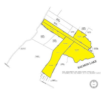 Salmon Lake Plan