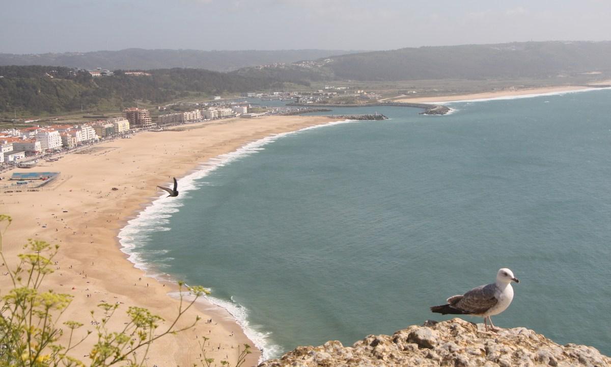 Portugal près de Nazaré et São Martinho do Porto4