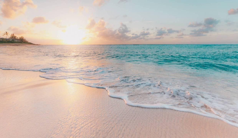 La plage à seulement 50 mètres Les résidents de Cap Marina bénéficieront aussi d'un accès direct à la plage et au Beach Club du groupe Evaco avec tous les avantages qu'offre le lieu.