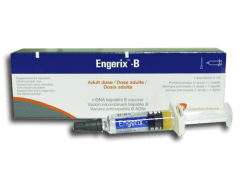 Engerix-B Hepatitis B Vaccine
