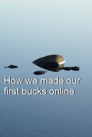 How we made our first bucks online
