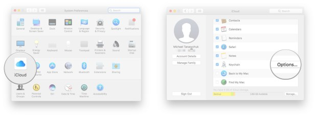 Launch System Preferences, click iCloud, click Options next to Keychain