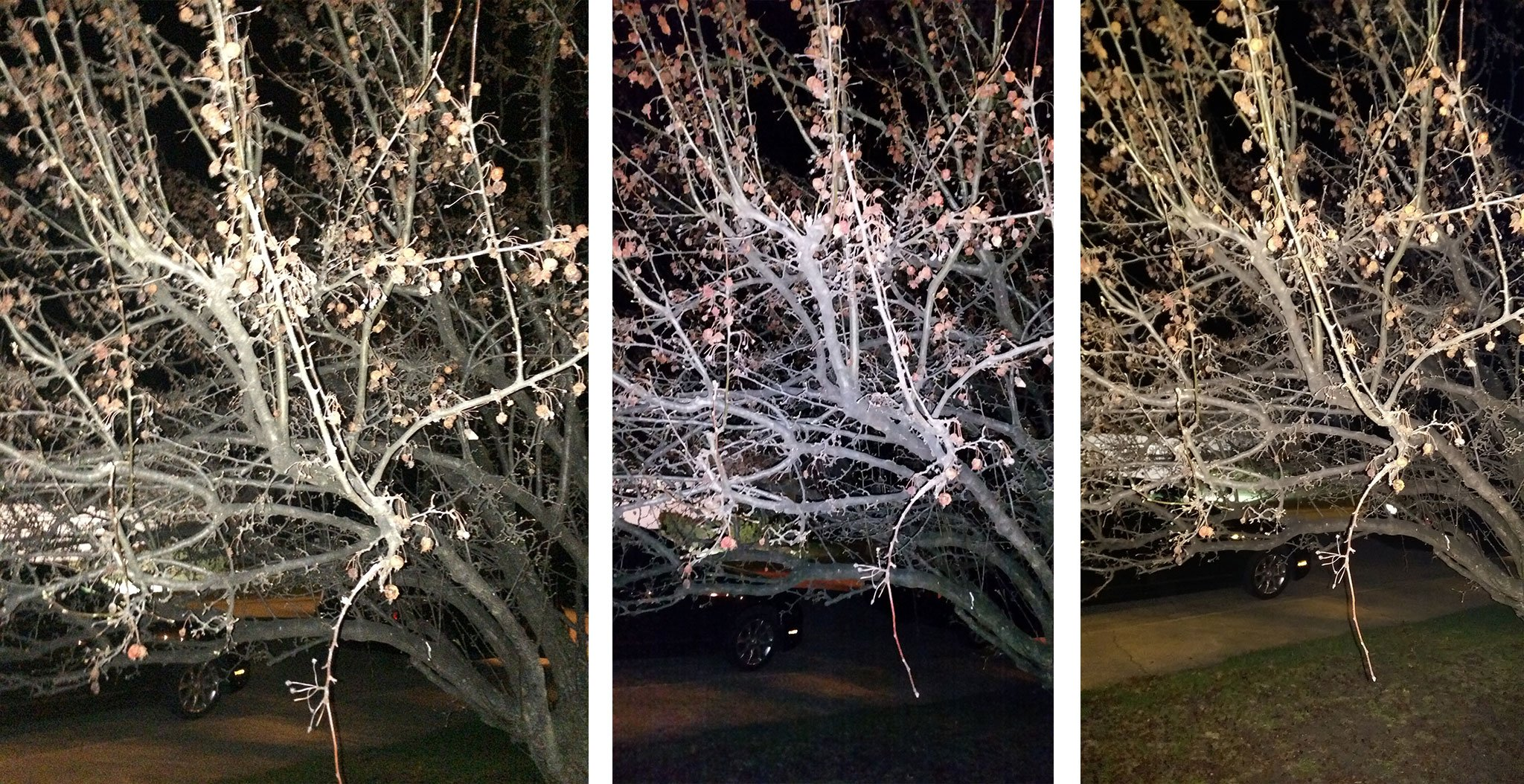 iPhone 5s vs. Galaxy S5 vs. HTC One M8: Flash photography