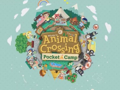 Image result for animal crossing pocket camp