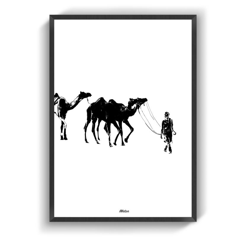 Kamelerne