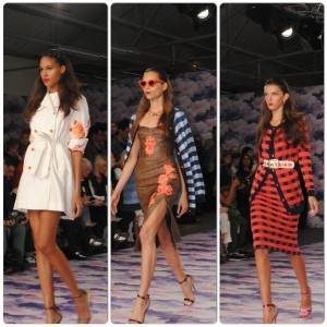 house-of-holland-ss14-review[2]