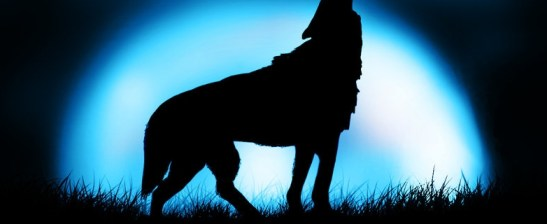 big_moon_wolf_howling_by_wintha-d4h2wkw[1]