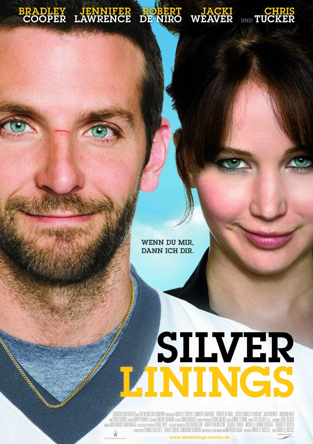 Silver Linings Playbook 2012 download mp4 movie online