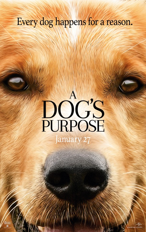 Image result for A dog's purpose movie poster