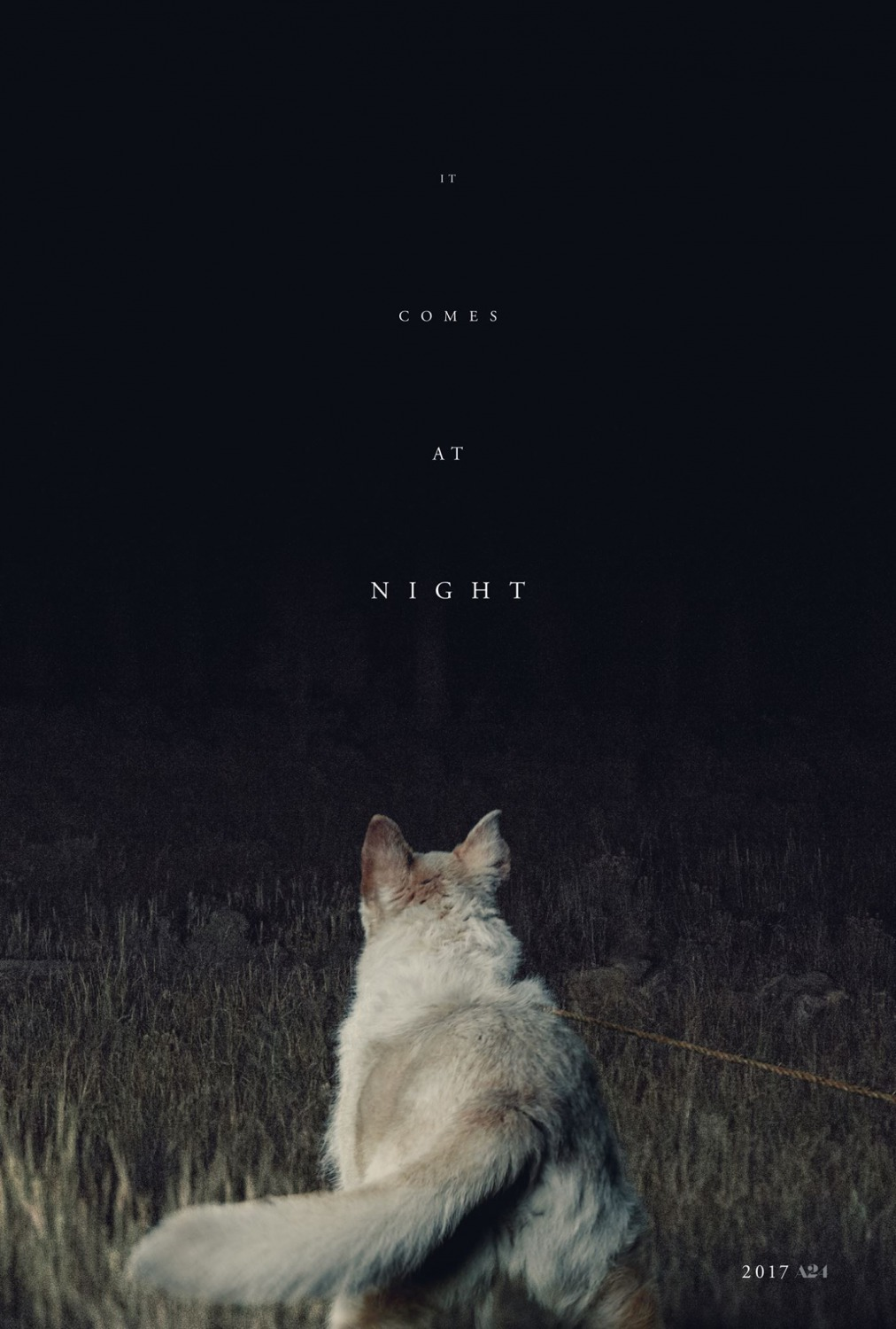 Image result for It Comes At Night movie poster