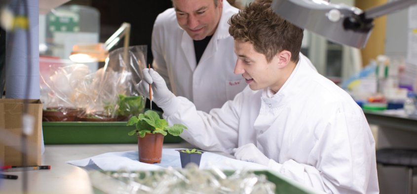 Student in Life Sciences