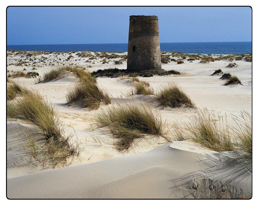 Huelva - Torre de Carbonera entre dunas de la Playa de Castilla -  Almonte / © Ente Spagnolo del Turismo - Turespaña