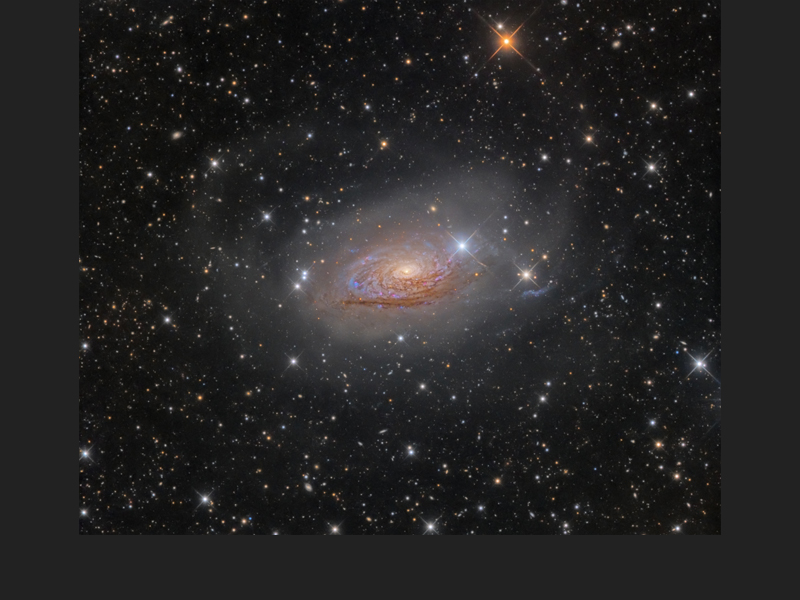 M63: Star Streams and the Sunflower Galaxy