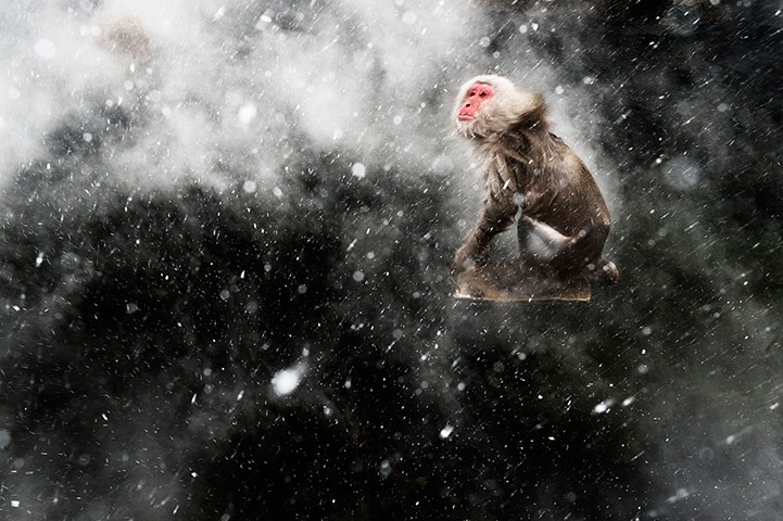 Creative visions winner: Snow Moment by Jasper Doest (The Netherlands)