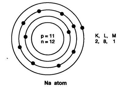 ncert-solutions-class-9-science-chapter-4-structure-atom-29