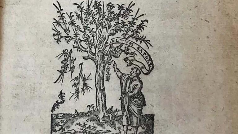 De las cosas del campo, tratado de agricultura romano por Marco Terencio Varrón.