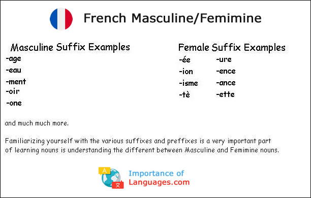French Masculine Femimine examples