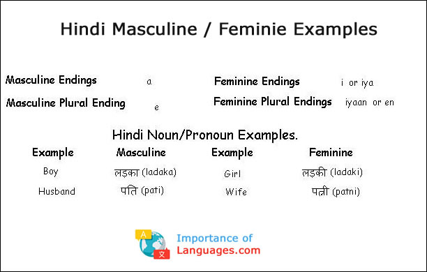 Hindi Masculine / Feminie Examples