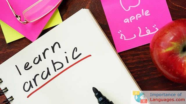 Why Learn Arabic Guide