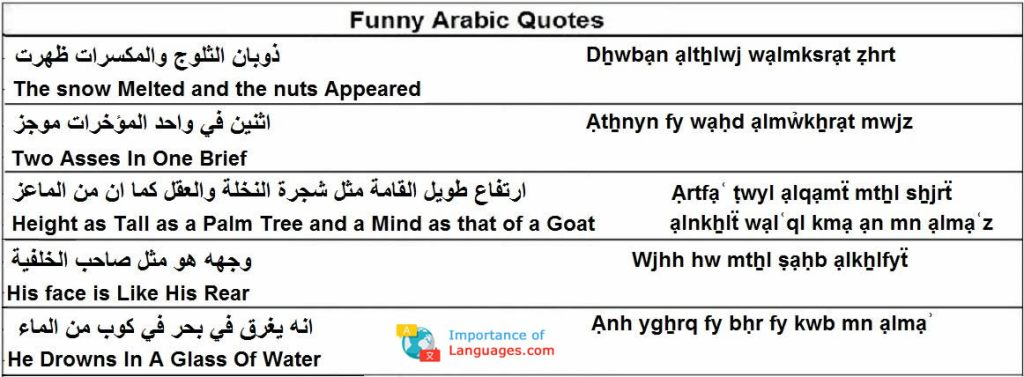 funny arabic quotes