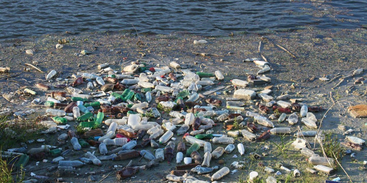 ORF TV-Bericht: Newton – Plastik in den Weltmeeren
