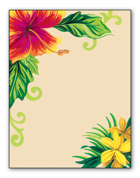 Stationery Amp Notecards LETTERHEAD Amp STATIONERY PAPERS