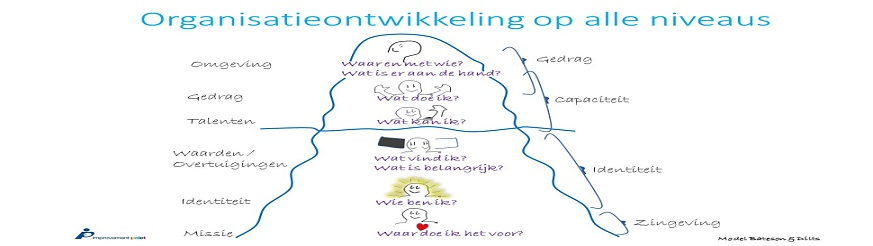 model Bateson en Dilts organisatieontwikkeling Improvement palet