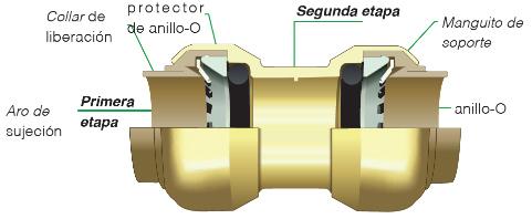 Conector SharkBite por dentro