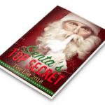 Secret Santa System Review