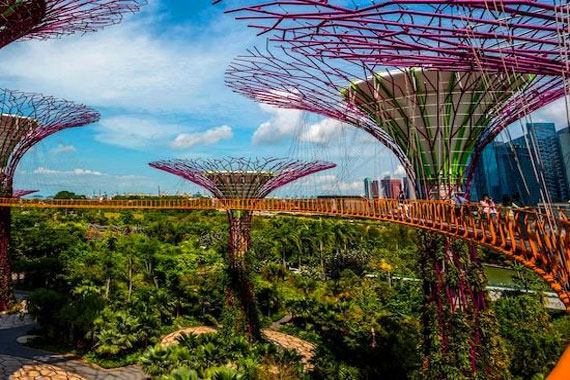 Exciting 4 Hours in Garden by the Bay, Magic Child of Nature & Technology