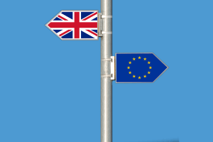 'Flexible Extension' To Article 50