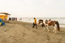 Beach of Gisum