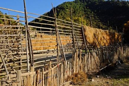Grass drying System