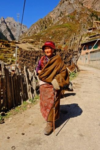 Tibetan Senior