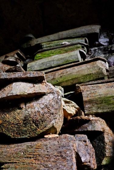 Tree Trunk Coffins